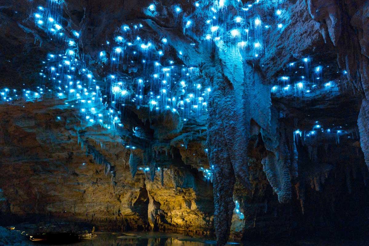 Name:  waitomo-caves.jpg Views: 13 Size:  133.8 KB